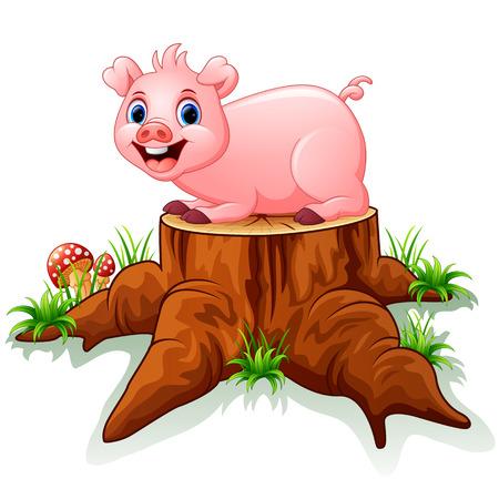 tree stump: Cute baby pig posing on tree stump