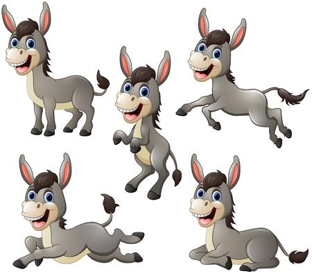 Donkey cartoon set collection Vectores