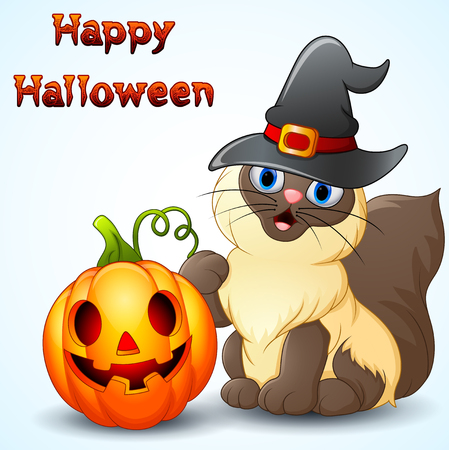 Cat cartoon with a witch hat and pumpkin