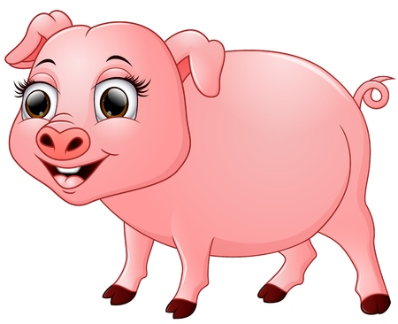 stocky: Cute baby pig cartoon isolated on white background