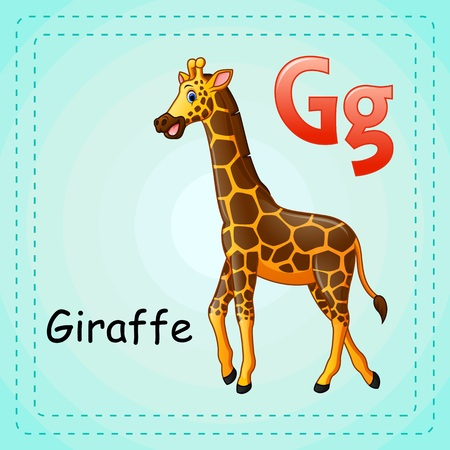 g giraffe: Animals alphabet: G is for Giraffe