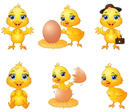 baby chick: Set of cute cartoon baby chick