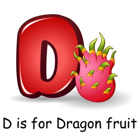 Fruits alphabet: D is for Dragon Fruits Illustration