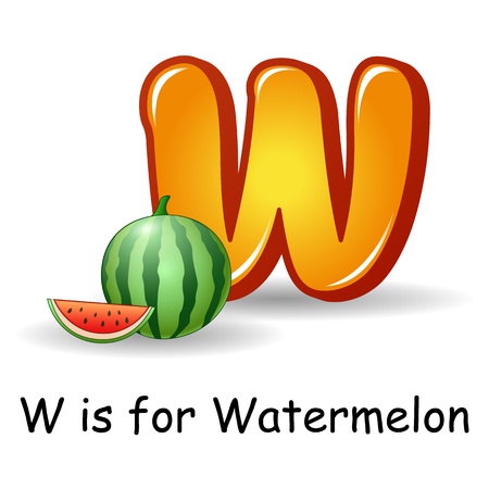 Vector illustration of Fruit alphabet: W is for Watermelon
