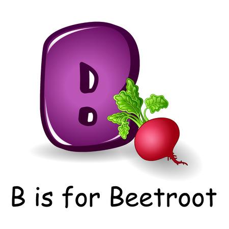 Vector illustration de légumes alphabet: B est pour Betterave Vecteurs