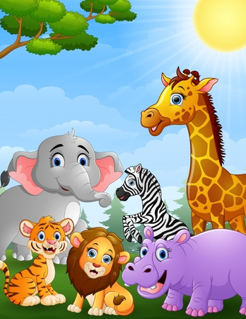 safari animals: Safari animals cartoon Illustration