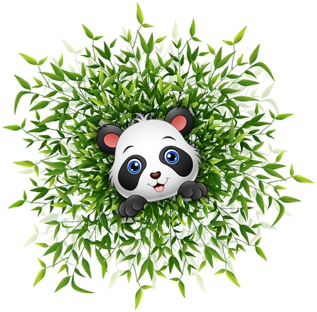 bamboo leaf: Cute baby panda smiling with lots of bamboo leaf isolated white background