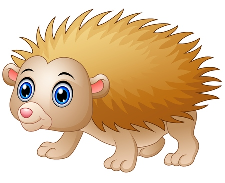 Baby hedgehog cartoon isolated white background