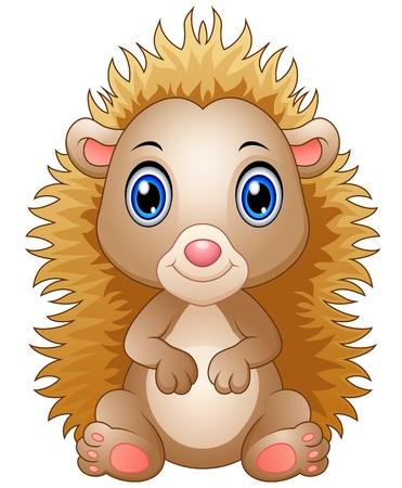 pygmy: Cute baby hedgehog sitting isolated on white background