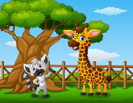 Animals giraffe and raccoon beside a tree inside the fence