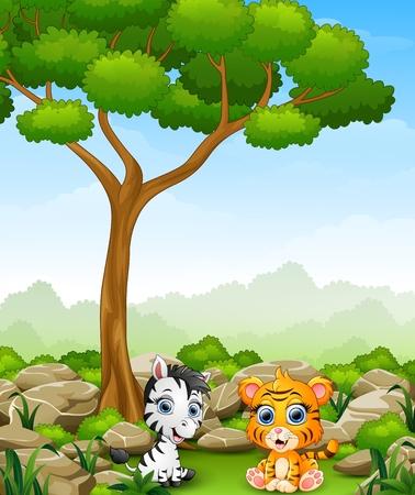tigre bebe: cebra bebé de dibujos animados con el tigre del bebé que se sienta en la selva