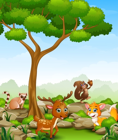 Wild animal cartoon in the jungle Illustration