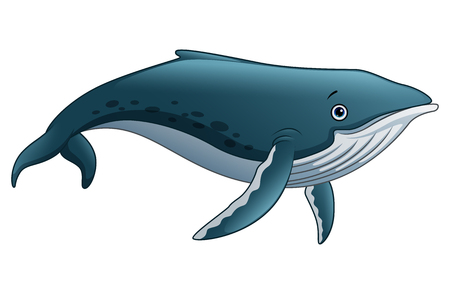 Illustration of Sperm whale cartoon