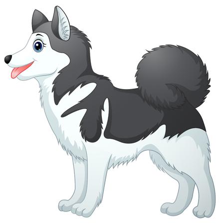 Illustration of Cartoon siberian husky