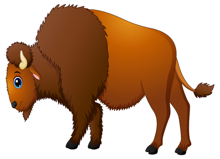 Illustration of Cute bison cartoon