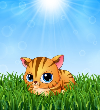 lay down: Cute kitten cartoon lay down in the grass on a background of bright sunshine