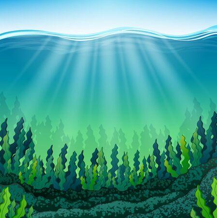Seaweed on the ocean floor Stock Photo
