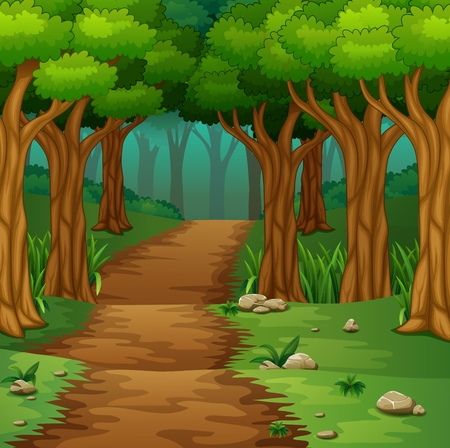 uphill: Forest scene with dirt road