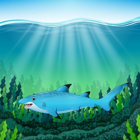 Vector illustration of Cartoon blue shark under water