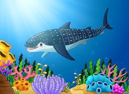 Vector illustration of Cartoon whale shark in the sea Illustration