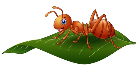 Vector illustration of Cartoon ant on the leaf