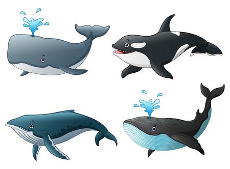 Vector illustration of Set of sea marine fish Illustration
