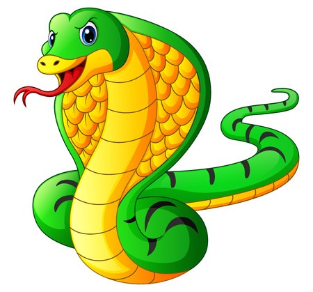 Vector illustration of Cobra snake cartoon Illustration