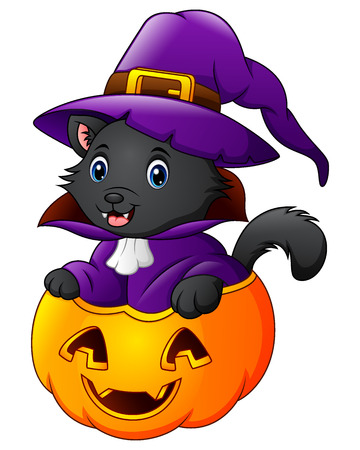 Vector illustration of Black cat dressed as witch on a halloween pumpkin Illustration