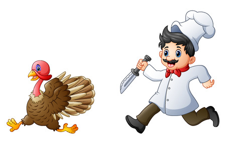 Vector illustration of Cartoon chef chasing a turkey