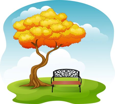 Green park with bench under autumn tree Stock Photo