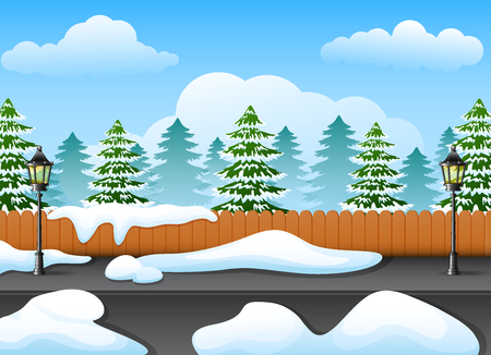 Winter forest landscape with fir tree and snowy on the street
