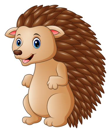 Vector illustration of Cute hedgehog cartoon Illustration