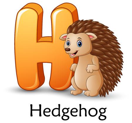 Letter H alphabet image