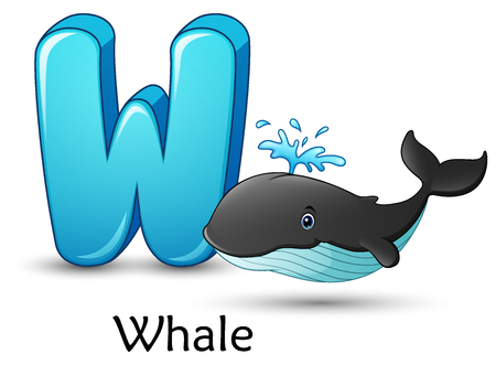 Vector illustration of Letter W is for Whale cartoon alphabet. 矢量图像