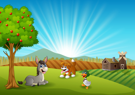 Animals farm activity in the morning