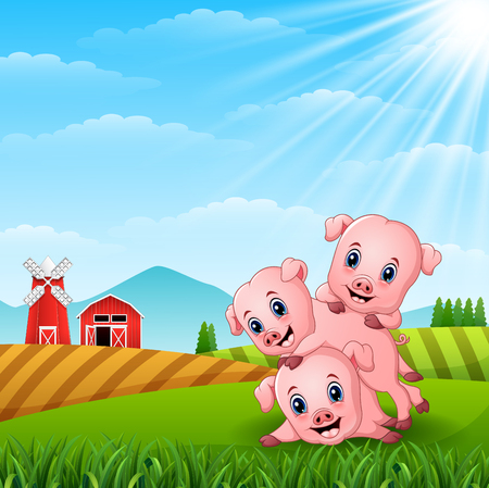 Three little pig playing in farm