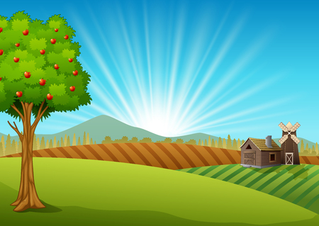 Farm landscape with green field and sunrise Stockfoto