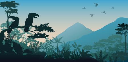Silhouette of bird in evening 写真素材