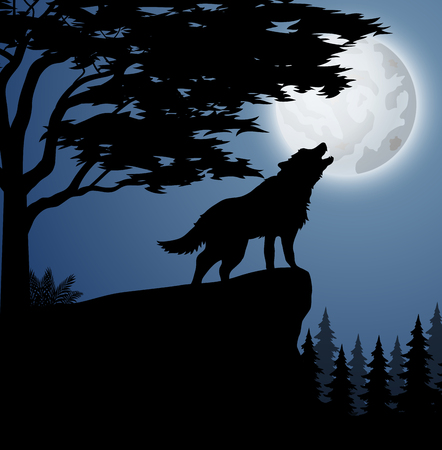Vector illustration of Silhouette wolf in hill at night