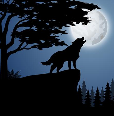 Vectorillustratie van silhouet wolf in heuvel 's nachts