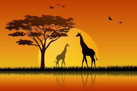 Illustration vectorielle de silhouette girafe au lac de savane Vecteurs