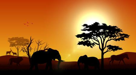 Vector illustration of Silhouette animals on savannas in the afternoon 向量圖像