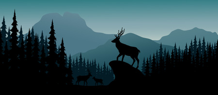 Vector illustration of Silhouette deer in hill at night