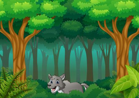 Le loup marchant dans les collines forestières Vecteurs