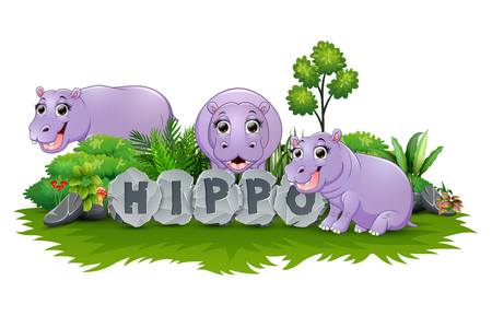 Hippo are playing together in garden