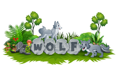 Wolf are playing in the garden