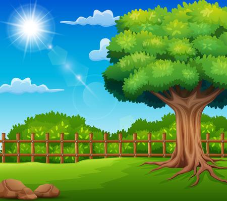 Paisaje de la naturaleza con prado verde y luz del sol