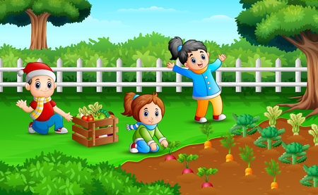 Little farmers are harvesting the results of their plantations