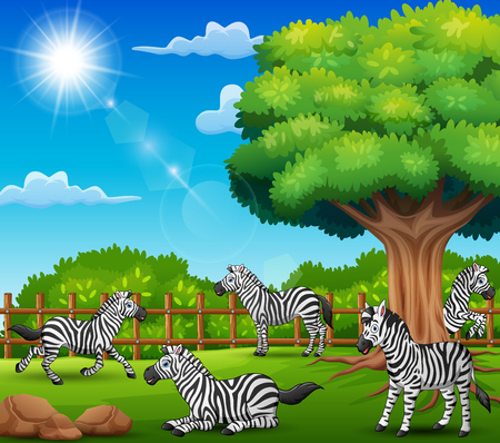 The zebras are enjoying nature by the cage Illusztráció