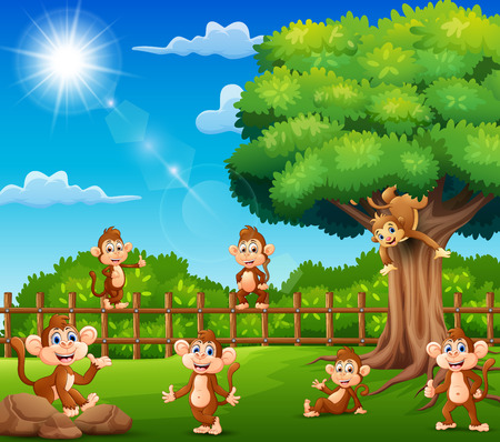 The monkeys are enjoying nature by a fence